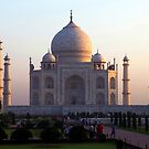 The Taj Mahal at sunrise. by John Dalkin