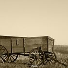 Abandoned Wooden Wagon by rhamm