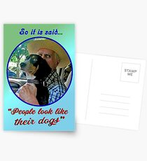 PEOPLE LOOK LIKE THEIR DOGS Postcards