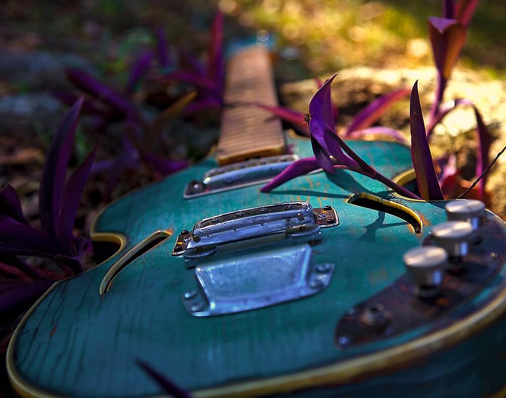 Forgotten Harmony by mrcollie