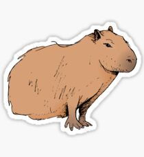 Classic Capybara  Sticker