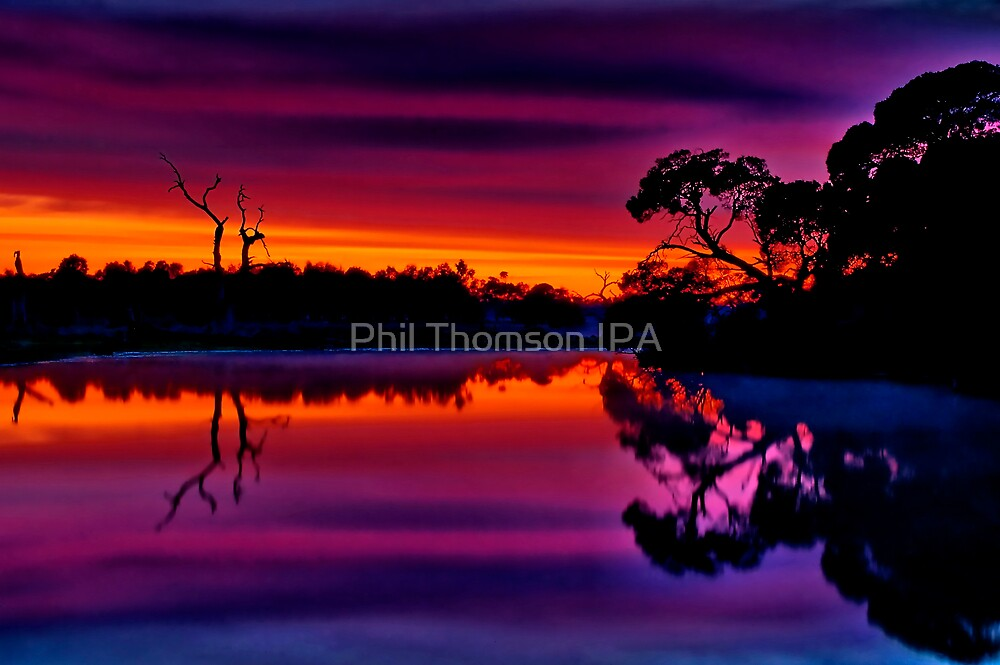 """Misty Magical Morning"" by Phil Thomson IPA"