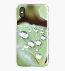 Drops on the clover iPhone Case/Skin