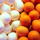 eggs by Luca Renoldi