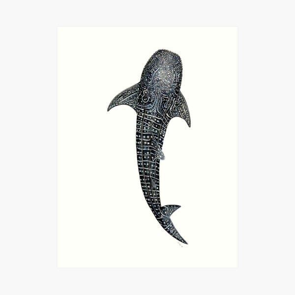 Tiburón ballena para buceadores, amantes de los tiburones y pescadores Lámina artística