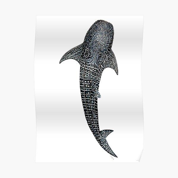 Walhai für Taucher, Haifischliebhaber und Fischer Poster