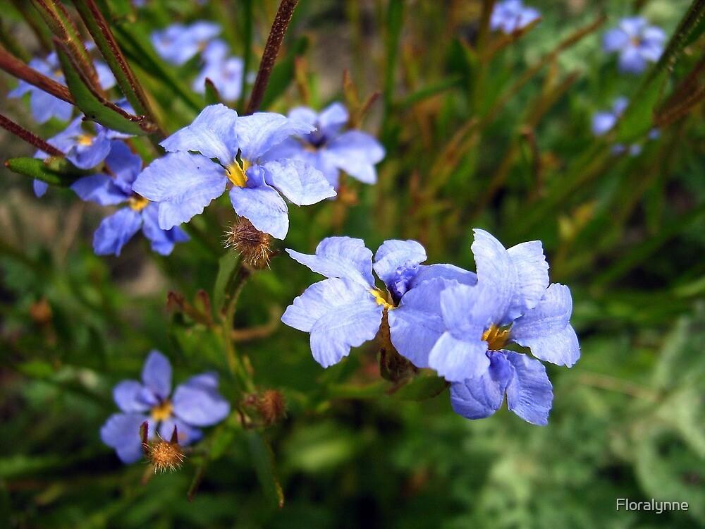 blue gems by Floralynne
