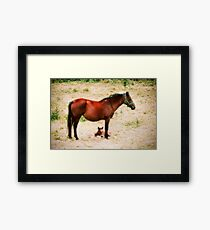 New Born Framed Print