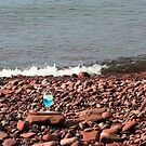 Sex on the Beach by Karen K Smith