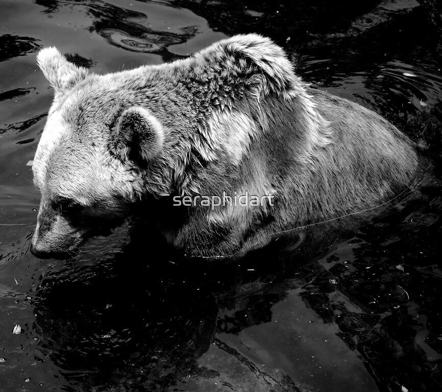 Bear by seraphidart