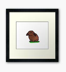 Bunny in grass Framed Print
