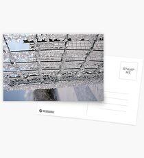 ICE RING Postcards