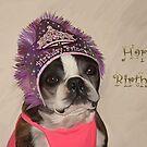 Happy Birthday Princess  by Cazzie Cathcart