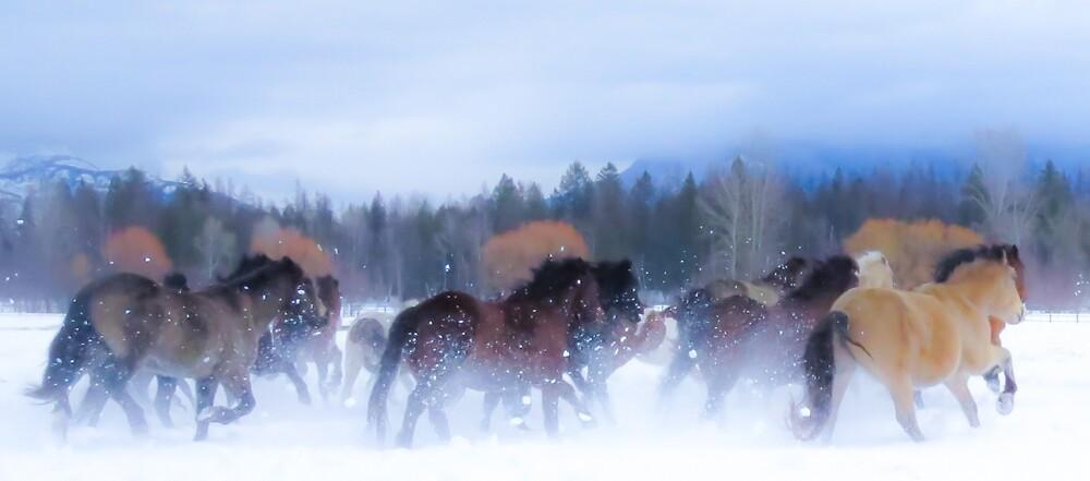Horse dreams by Linda Sparks