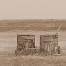 The 2 Old Water Tanks by Sprinkla