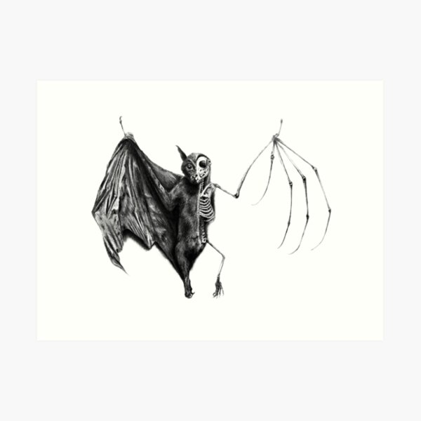 Half The Bat I Used To Be Art Print