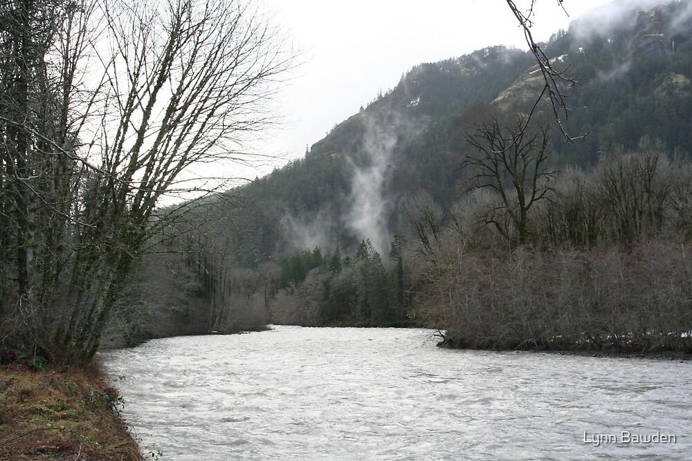 """""""Elwha River Flood"""" by Lynn Bawden"""