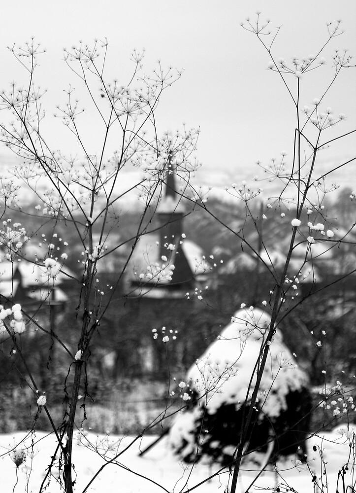 winter details (2) by StefaniaC