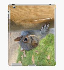 Peek-a-Boo! (Self Portrait in the Eye) iPad Case/Skin