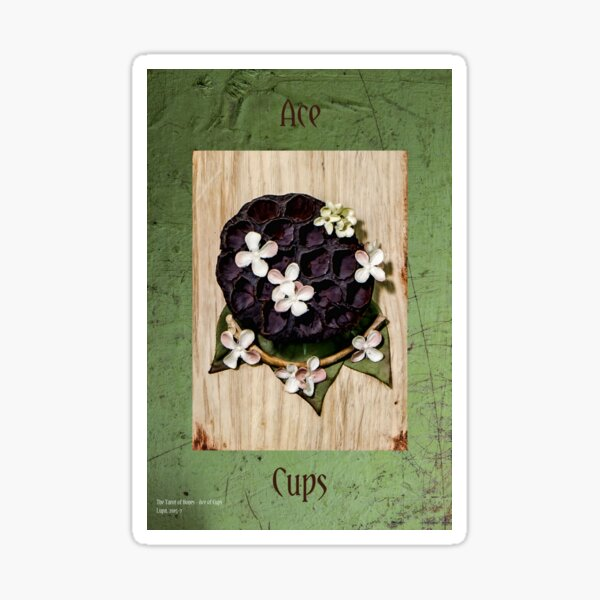 Ace of Cups Sticker