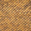 Urban Views VI - Goldenes Dachl by Walter Quirtmair