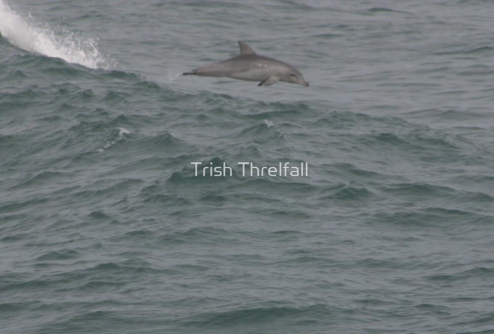 first jump by Trish Threlfall