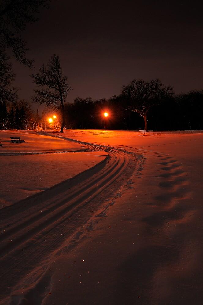Ski Trail at Night by Geoffrey
