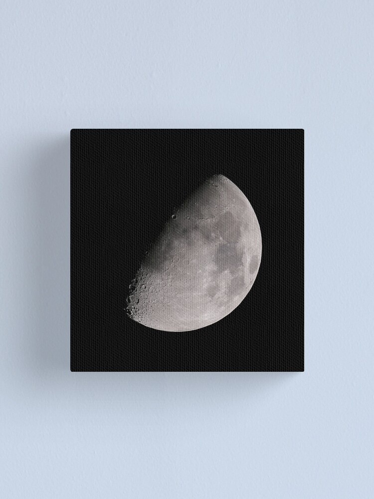 Alternate view of THE MOON PART 2 Canvas Print