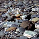 Pebbles by Aneurysm