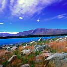 Lake Tekapo New Zealand by Aneurysm