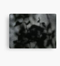 Leaves through a window Canvas Print