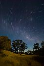 Mitre Rock by Moon Light by Murray Wills