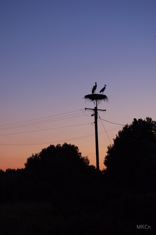 Storks and sunset by MKCn