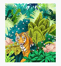 Jungle Tiger Photographic Print