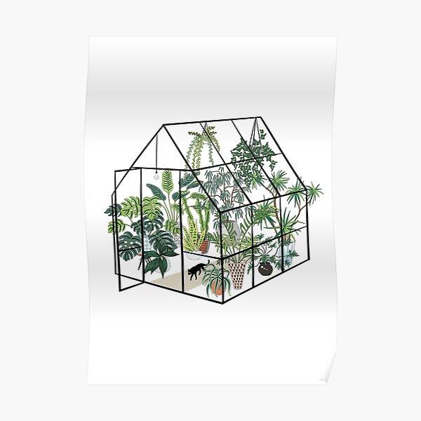 serre avec des plantes Poster