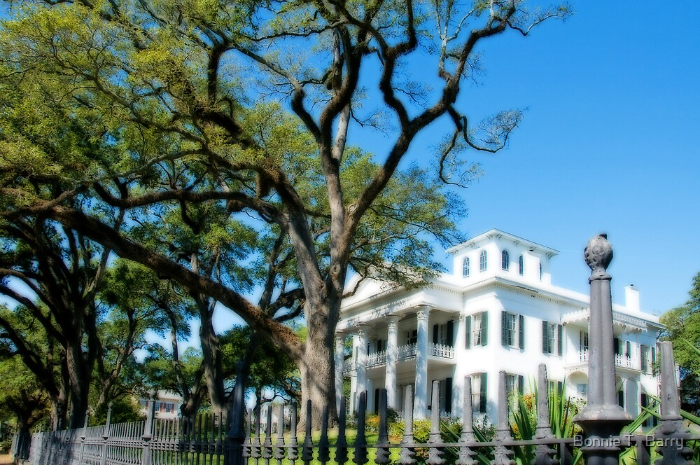 Beautiful Old Natchez by Bonnie T.  Barry