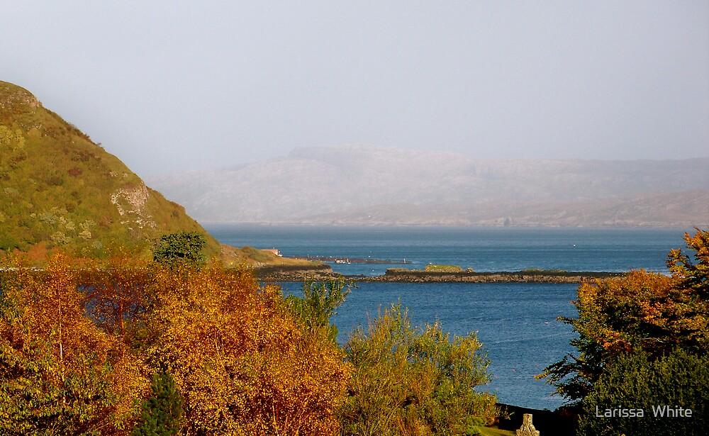 Isle of Skye by Larissa  Plain