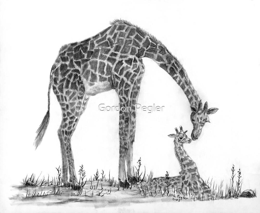 Giraffe and Baby - Charcoal by Gordon Pegler