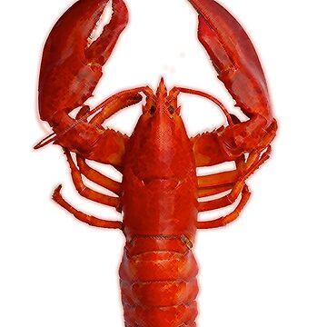 Top Lobster - Jordan B Peterson by CptNapalm