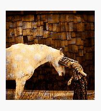 Horse Language Photographic Print