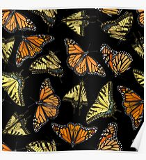 Monarchs and Swallowtails Poster