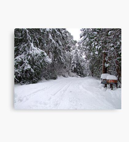 My Snowy Road Canvas Print