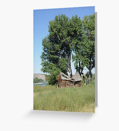 Barn in the Cottonwoods Greeting Card