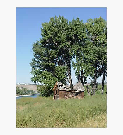 Barn in the Cottonwoods Photographic Print