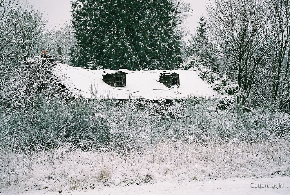 Old homestead no more - Winter Series by Cayannagirl