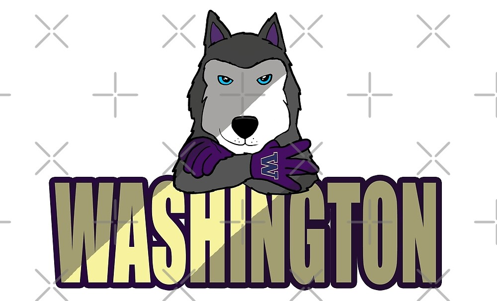 Husky Nation by Kent Vaughan