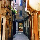 Streets of Venice by Chelsea Brewer