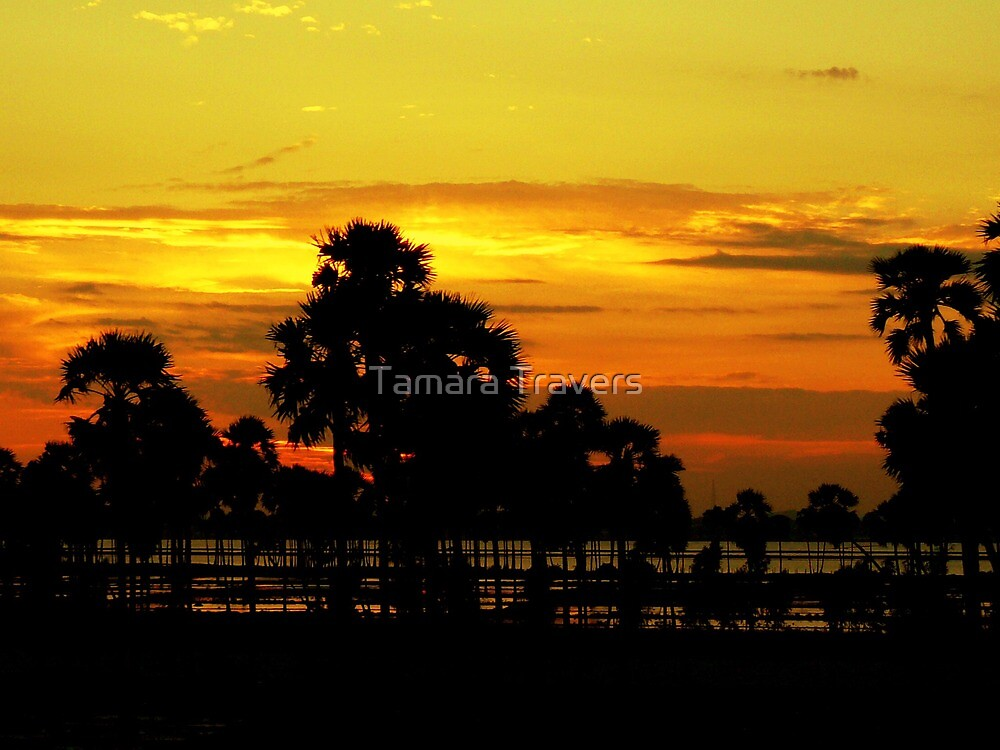 Karnataka Sunset by Tamara Travers