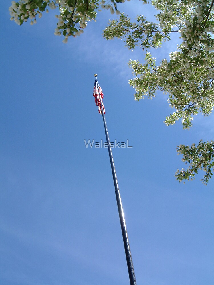View of The Flag by WaleskaL