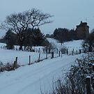 East Mains Castle In Winter, East Kilbride by MagsWilliamson